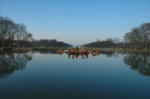 Versailles nach hinten
