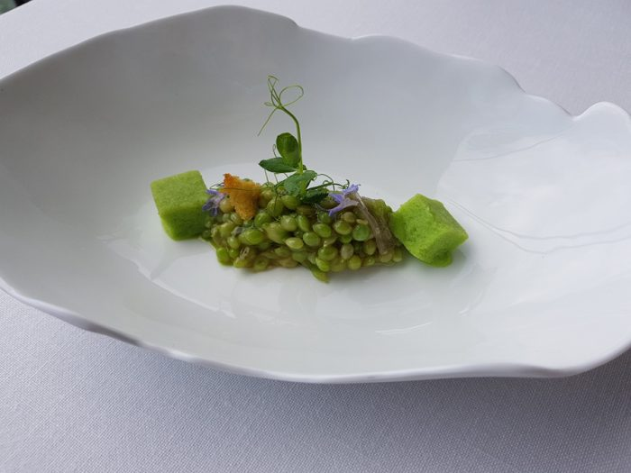 Tear peas, iberian gel and crispy corn bread