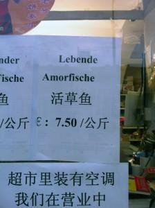 Amorfische