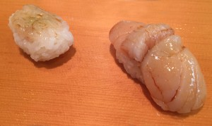 Baby shrimp - scallop
