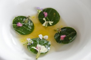 Raviolo of raw sweet water shrimps, soup of rhubarb and yeast