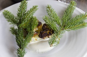 Cauliflower fried with pine in butter, whey with pine oil, cream with horseraddish