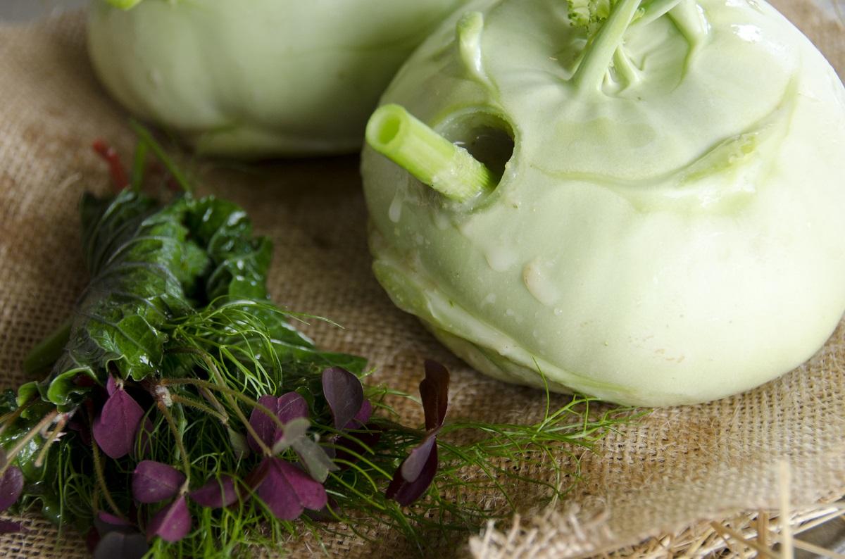 Nordic coconut (kohlrabi, inside kohlrabi juice, fennel straw, fresh herbs)